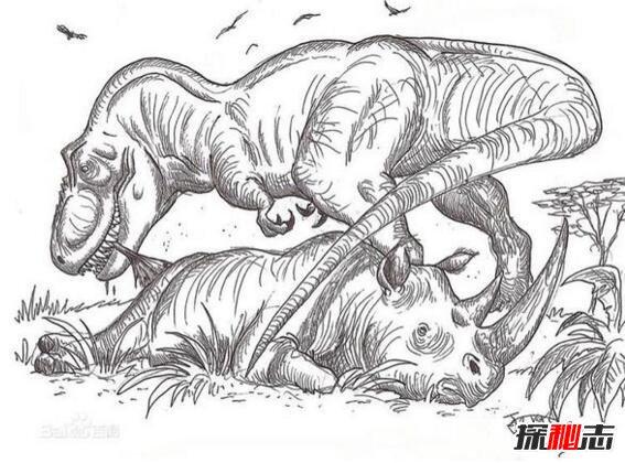 蓝铅笔手绘 犀牛
