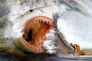 史前巨齿鲨生死谜,体长30米以鲸鱼为食(或未灭绝)
