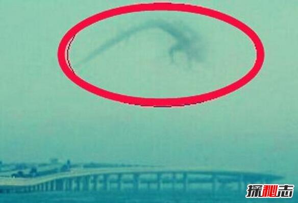 安徽巨蟒渡劫全过程图片