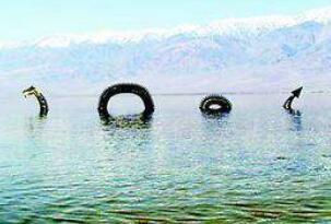 揭秘加拿大水怪奥古布古真相,实则一条巨大的海蛇