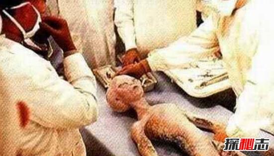 世界上谁见过外星人图片