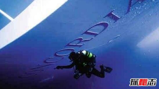 海底惊现12米巨型真龙图片图片