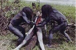食人族现在还有吗?印度尼西亚科罗威人喝人血吃人肉(死人)