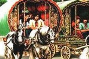 吉卜赛人的故乡在哪,印度西北部(游荡在世界各国的可怜人)