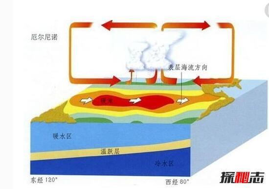 全球变暖引发的现象图片