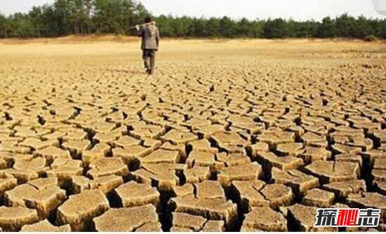 全球气温变暖的现象图片