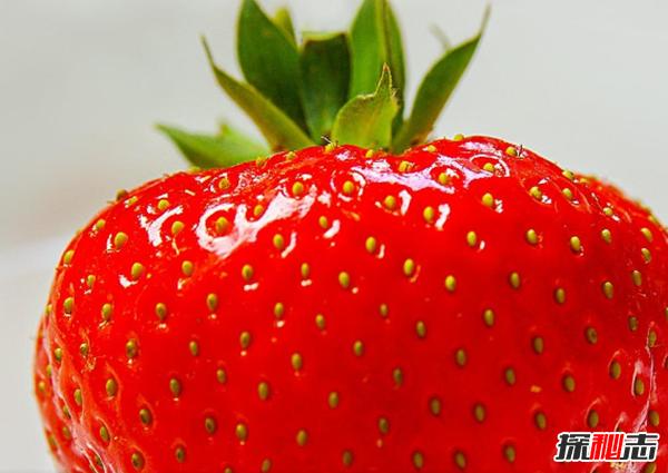 吃草莓有哪些好处?草莓的十大作用与功效