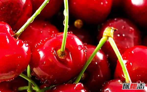 樱桃对人体有什么好处?樱桃的十大营养价值和功效