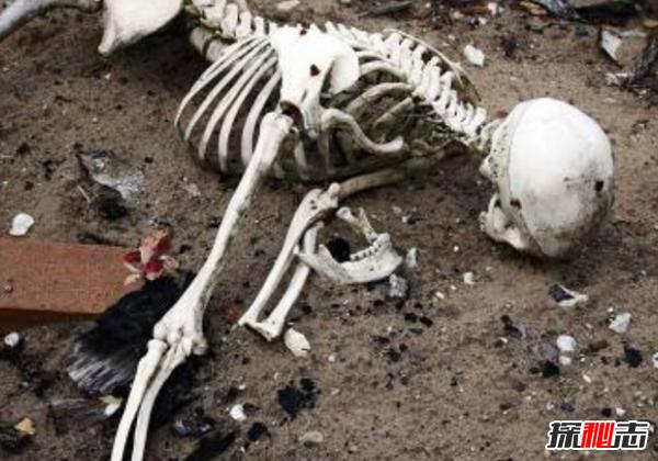 人死后永远消失好可怕?人死后在棺材里的十大变化