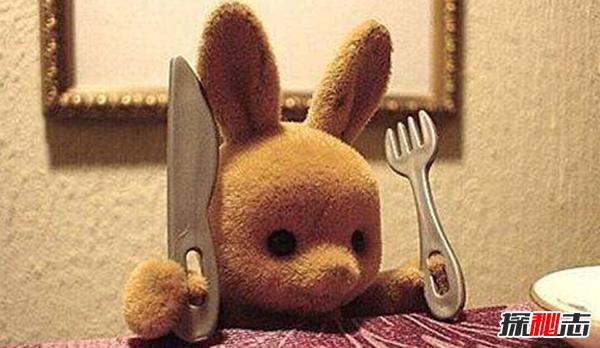 什么是饮食失调?饮食失调的十大最常见表现