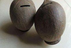椰子壳属于哪类垃圾 属于干垃圾也属于其他垃圾
