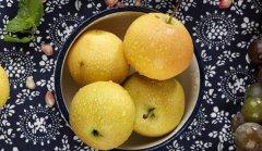 安果梨和南果梨的區別 口(kou)感(gan)區別比(bi)較大(南果梨更(geng)甜)