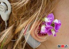 人造耳蜗多少钱 为什么这么贵?