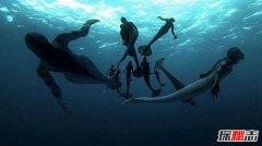 黑鳞鲛人灭绝了么 美人鱼是真实存在的吗