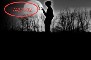 7432502是什么意思,其实想爱无人爱(一个单身密码)