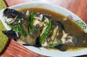 老虎斑鱼禁忌,基本无禁忌/孕妇都可以吃(有美容养颜的作用)