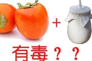 柿子香蕉酸奶可以一起吃吗,可以一起吃(柿子一定要成熟的)