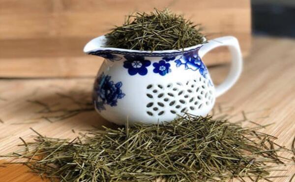 松针茶的功效和药用价值图片