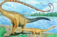 世界上最大的恐龙:地震龙,长36米,重40吨(植食性恐龙)