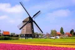 荷兰的风车景观:风车之国,置身童话世界(上千个风车)