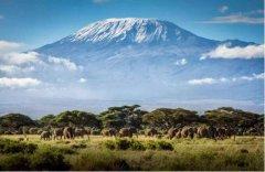 非洲最高的山峰:乞力马扎罗山,高5892米(誉为非洲之王)