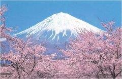 日本最美的自然风光:白谷云水峡动漫取景地,野竹林绝美