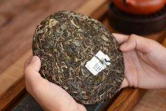 普洱茶致癌还是防癌?防癌,变质茶叶致癌(产生黄曲素)