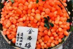 金西梅能吃吗?能吃不会中毒,腌制过的桃子(孕妇不宜吃)
