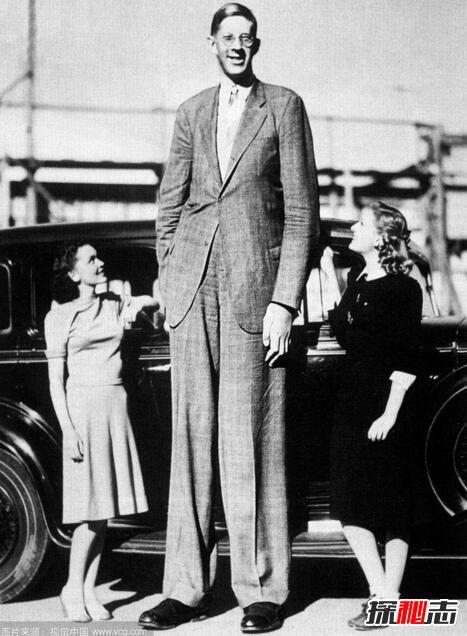 世界上最高的人是谁图片