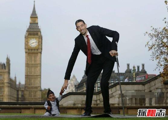 世界最高的人图片
