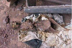 千年古墓挖出会说话女尸 会说话还产下7公斤活婴(假的)