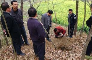 陕西破获古墓盗窃案已破,7个团伙41人全部捉拿归案