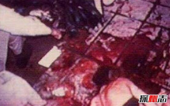 美国辛普森杀妻案图片