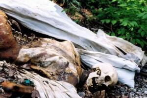 美国恐怖的尸体农场,专门研究腐烂尸体的场所(重口慎点)