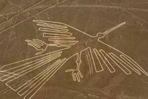 揭秘纳斯卡线条之谜,巨型动物图案代表星座(星球运动图)