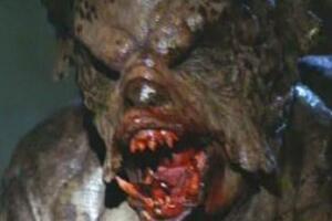 吸血怪兽之谜,大型怪物吸干动物的血(患兽疥癣的郊狼)