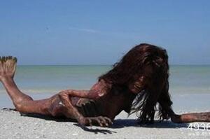 美人鱼传奇之谜,南斯拉夫海岸发现美人鱼化石