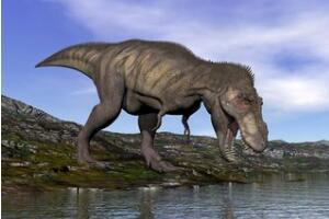 世界上最古老蛋,2.8亿年前的史前恐龙蛋(史前恐龙)