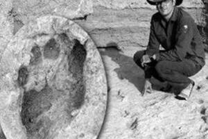 肯尼亚惊现150万年前脚印,科学证实是史前人类的脚印