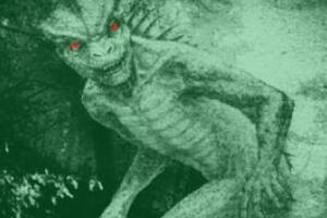 揭秘蜥蜴人之谜,蜥蜴人真的存在吗(美国人目击蜥蜴人)