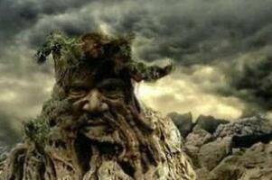 揭秘马达加斯加食人树之谜,食人树真实存在吗(吞噬人肉)