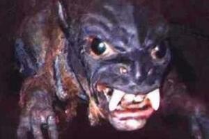 吸血怪兽卓柏卡布拉之谜,神秘生物吸干动物血液(恐怖)