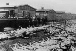 二战犹太人为何逃到上海,日本人为什么不杀犹太人(详解)
