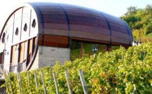 世界上最大的酒桶,能容纳20多万升酒(高7米宽8米)
