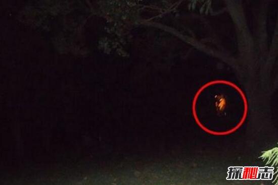 探索世界上到底有沒有鬼,科學家首次證明有鬼的存在